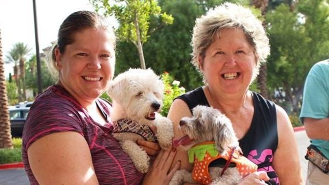 Free Puppy Run For Locals Hosted By Life Time Green Valley Ksnv